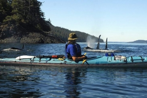 Spirit of the West Kayaking offers multi-day wilderness kayaking trips in British Columbia from Vancouver Island and Quadra Island in the BC Discovery Islands