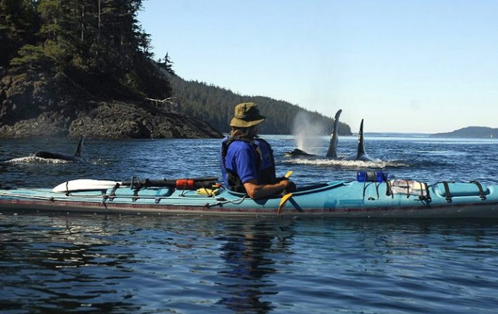 Spirit of the West Kayaking offers multi-day wilderness kayaking trips in British Columbia from Quadra Island in the BC Discovery Islands