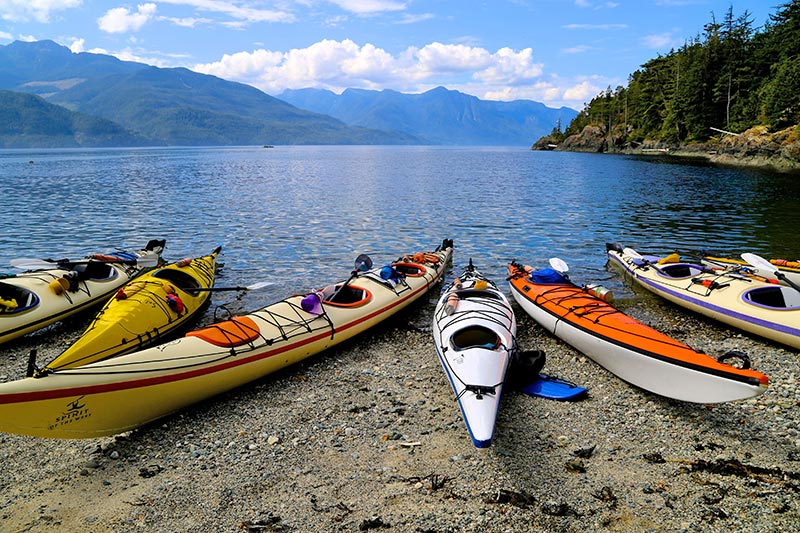Johnstone Strait & Broughton Archipelago Expedition in BC