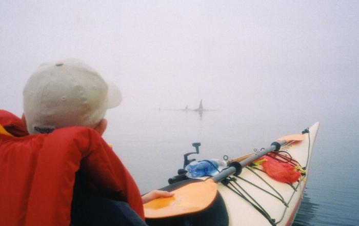 green-tourism-british-columbia-spirit-of-the-west-kayaking-adventures-british-columbia-5
