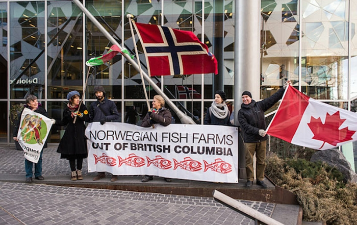 open-net-salmon-farms-ending-in-norway-but-ok-for-british-columbia-protest