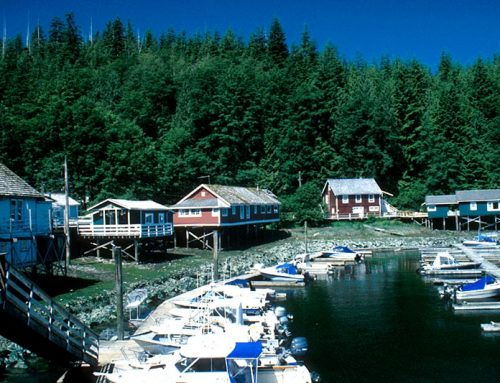 Telegraph Cove: A Miniseries