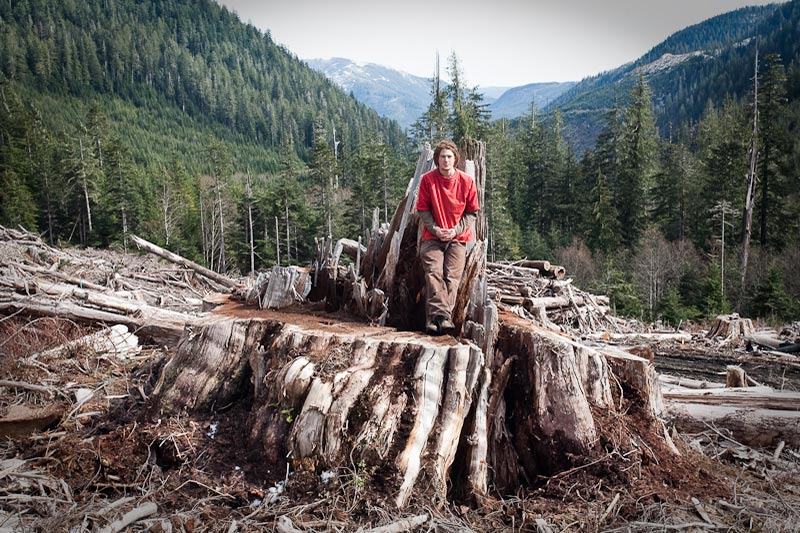 Ancient Forest Alliance, Vancouver Island, British Columbia: Giant Redcedar Stump, Bugaboo Creek, Gordon River Valley