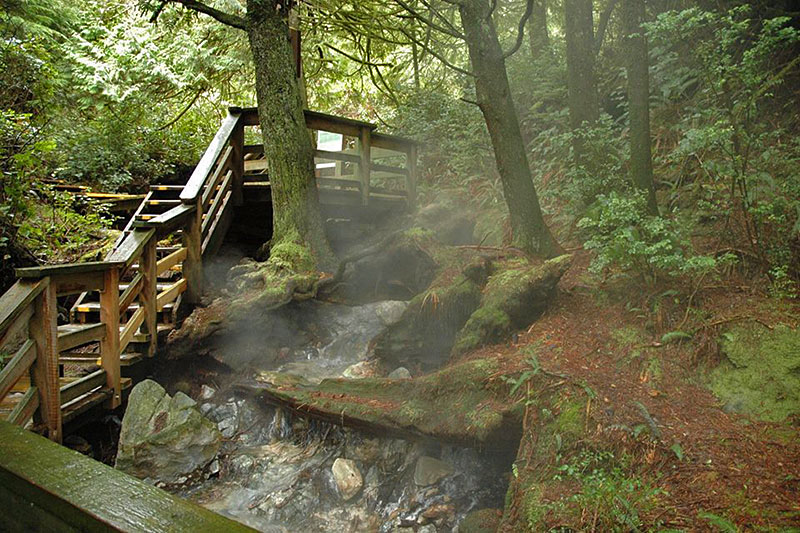 The Boardwalk to Hot Springs Cove, Vancouver Island. Photo: Remote Passages Marine Excursions, Tofino.