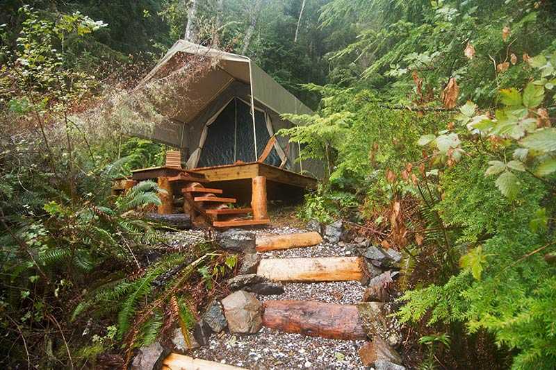 Safari-style luxury tents at base camp: Orca Dreams offers kayaking, whale watching and luxury camping on Compton Island, Blackney Pass, British Columbia