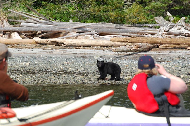 Photo: Spirit of the West Adventures, British Columbia. www.kayakingtours.com