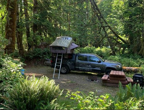 Camping on Vancouver Island without a Reservation